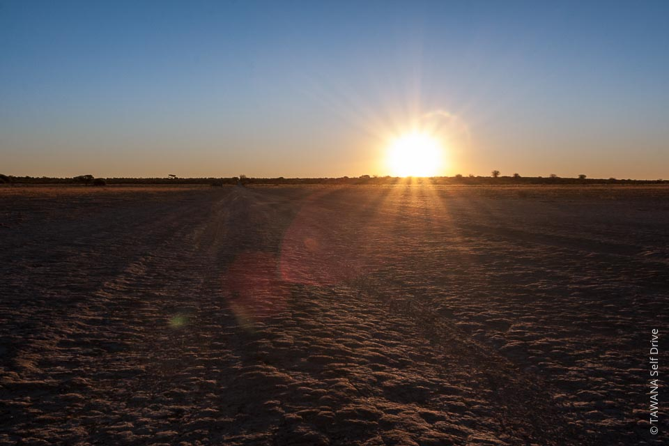 The massive Kalahari Desert covers 85% of Botswana.