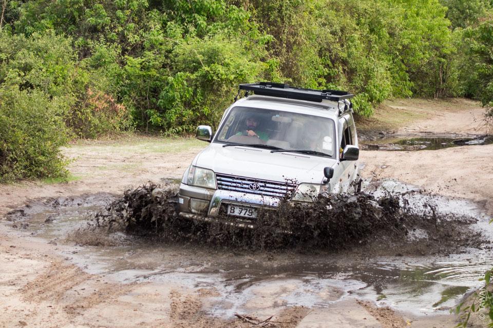 4x4 safari pack for Chobe