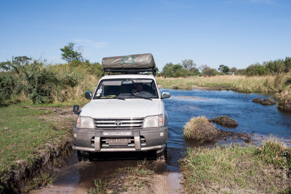 Rent a budget 4x4 in Botswana!