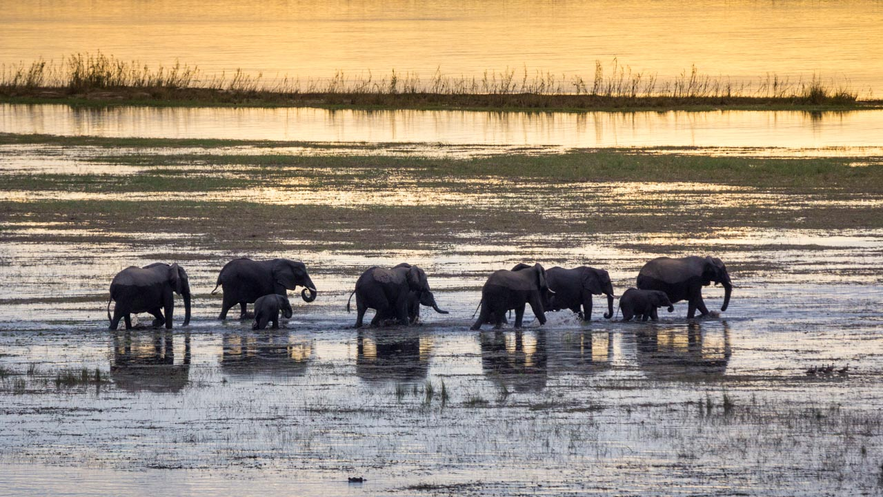 Self-drive safari routes in Botswana and Southern Africa